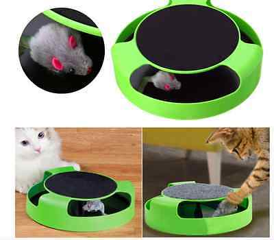 Motion Kitten Cat Toy Catch The Mouse Interactive Toys for Cat Funny Faux Mouse