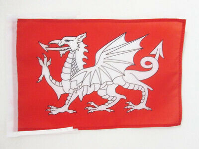 ENGLISH WHITE DRAGON FLAG 5/' x 3/' St George Saint Georges Day England Pendragon