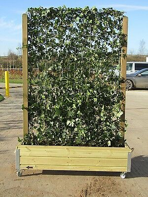 Green Ivy Wall- Instant Fencing/Privacy Screen/Divider 1.2m Length x 1.8m High
