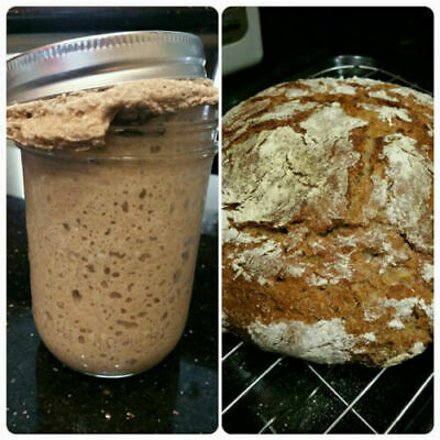 80g Authentic Naturally Grown Organic Sourdough Bread Starter Express Shipping