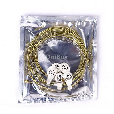 6 Pcs un ensemble de Corde pour Guitare Acoustique en Or