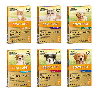 Advocate for Dogs & Cats All Size Flea Treatment for Dogs and Cats Free Shipping