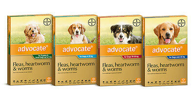 1 Tube Advocate for Dogs Flea and Worm Treatment for Dogs All Sizes Free Ship