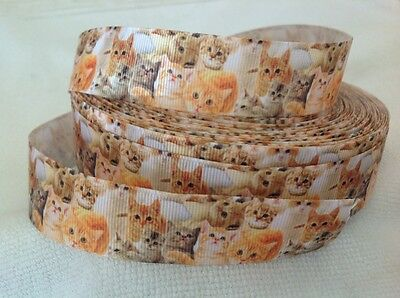 Cats 25mm Grosgrain Ribbon 3 Meter Length Hairbows Craft Scrapbooking