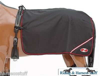 Zilco Driving Harness - Deluxe Quarter Sheet Exercise Rug Driving or Lunging