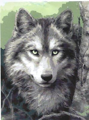 NEW WOLF PORTRAIT 50 x 40cm  Such a realistic and detailed design! FREE POST