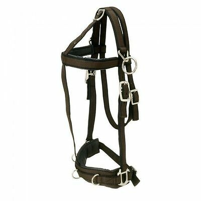 Fully Adjustable Padded Nylon Training Lunge Caveson Horse Size Overcheck Rings