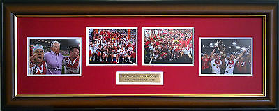 St George Illawarra Dragons 2010 Rugby League Premiers Photos Signed And Framed