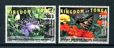 Tonga 2016 MNH Butterflies 2v Set Insects Lime Swallowtail Butterfly EMS Stamps