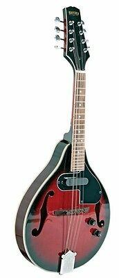 BRYDEN Teardrop A Style Electric Mandolin Arch Top *NEW* F Holes Red