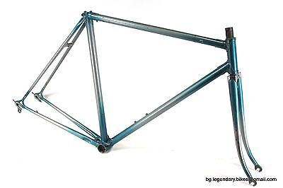 VINTAGE Race bike made in Italy Lugged Steel Frame Campagnolo dropouts