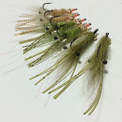 BWC flies  Shrimp flies for  flyfishing Bream EP Whiting Flathead