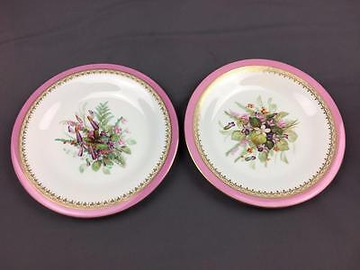 2 AntQ Royal Worcester Pink Band Circa 1860s Hand Paint Floral Cabinet Plates