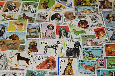 Bulk Lot Dogs  Themed Stamps X 50  Good Mix Free Postage In Oz