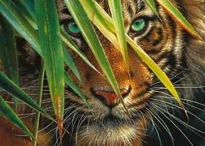 Ravensburger Mysterious Tiger 1000pc Jigsaw Puzzle