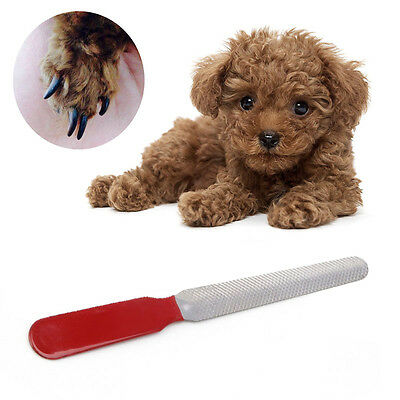 Dog Cat Stainless Steel Professional Nail Toe Manicure File Pet Grooming Tool