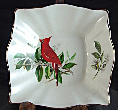 Royal Chelsea AUDUBON BIRD Square Nappy with Cardinal