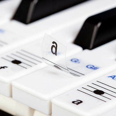 Keysies Transparent  Piano & Keyboard Note Stickers (With Placement Guide)