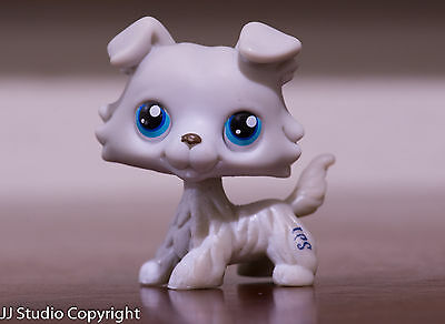 #363 Rare Littlest Pet Shop Grey Collie Dog Puppy Blue Eyes Animal LPS Toy