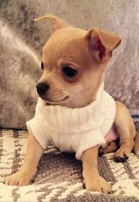 Chihuahua Size (XSmall 6) White Knitted Jumper Pet Dog Clothes Dog Jumper