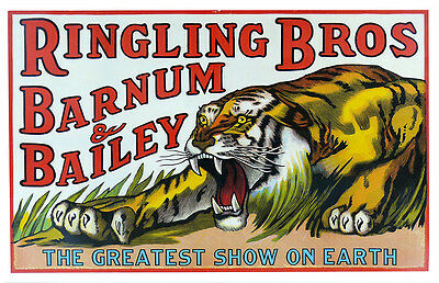 Ringling Brother's Circus Roaring Tiger Two 11x17 Posters