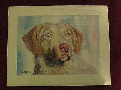 "Michael Steddum ""Chesapeake Light Deadgrass"" - Limited Bay Retriever Print"