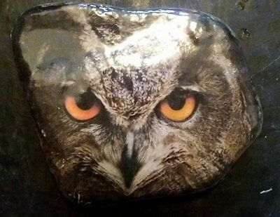Owl  - attractive lacquered decorated stone