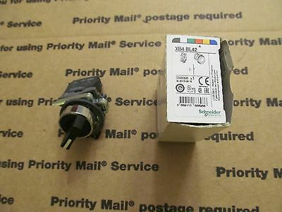 Schneider Electric Selector Switch Xb4Bd21
