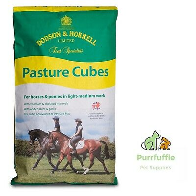 20Kg Dodson & Horrell Pasture Cubes Horse Food Feed With Tasty Mint & Garlic