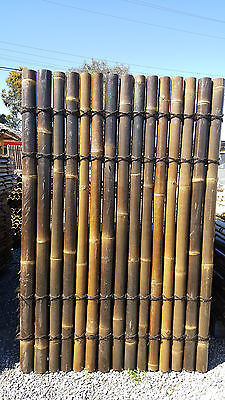 Bamboo Panel Fenceing 1.8m tall x 1.2m wide $42.00 AVAILABLE NOW  Dandenong