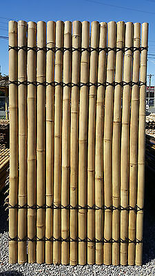 Bamboo Panel Fenceing $42.00 2.1M x 1.2M WIDE Dandenong