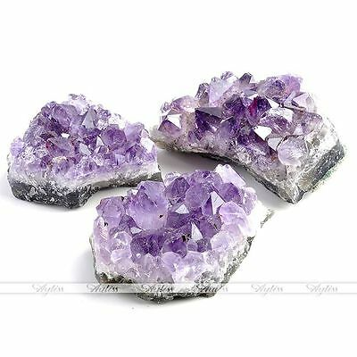 1x Natural Amethyst Gemstone Cluster Crystal Healing Stone Specimen Collectables