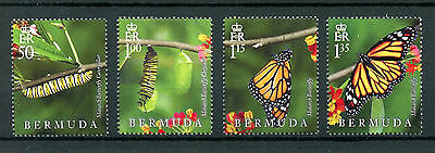 Bermuda 2016 MNH Lifecycle Monarch Butterfly 4v Set Insects Butterflies Stamps