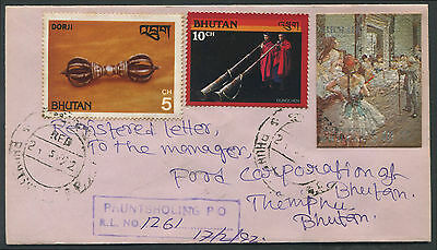 Bhutan registered cover withplastic textured Painting stamp
