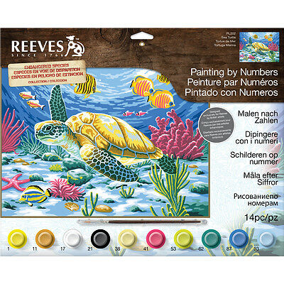 "Paint By Number Kit 12""X16"" Sea Turtle PBNLG-202"