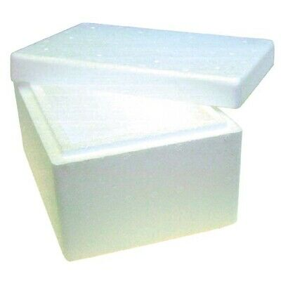 2 x Foam Cooler Box 2 Litres With Lid, Each 621945