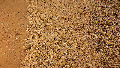 SAND 1.5kg FINE, ROUGH & SMOOTH (ORKNEY BEACH, ARTS & CRAFTS, HOME DECOR)