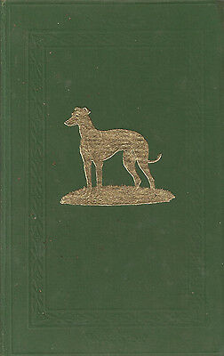 1954 The Greyhound Stud Book National Coursing Club Vol 73 Hardback Book