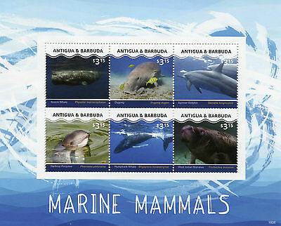 Antigua & Barbuda 2016 MNH Marine Mammals 6v M/S Whales Dolphins Dugong Stamps
