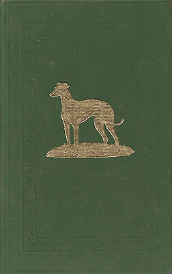 1955 The Greyhound Stud Book National Coursing Club Vol 74 Hardback Book