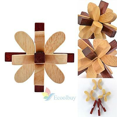 Wooden Educational Toy Kongming Luban Lock Brain Teaser Ball Out Puzzle Game  A