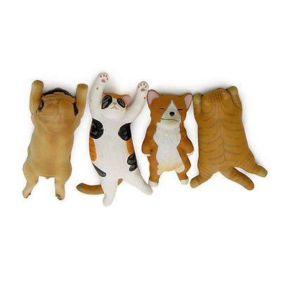 Groceries Japan Sleepy Zoo Cat PVC Action Figures Toys DIY Decoration Gifts