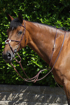 John Whitaker Running Martingale, Black with Brass Fittings