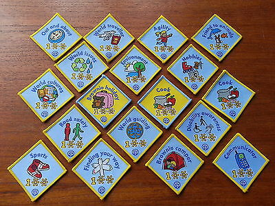 18 x BROWNIES 100 Years INTEREST Woven BADGES Girlguiding Camp Blanket Guides