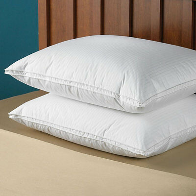 Luxury 100% Pure Hungarian Snow White Goose Down Bed Pillow Hotel Quality