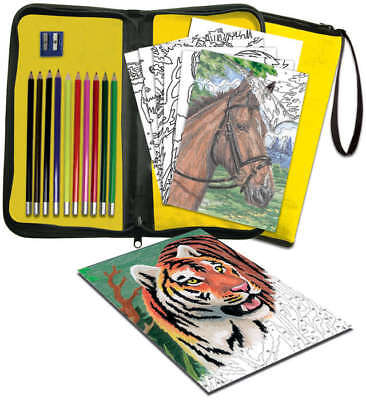 Big Kid's Choice Easy To Do Keep 'N Carry Set Color Pencil By Number BK-KCCPN