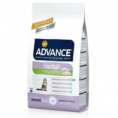 Advance Chat Adult Hairball