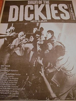 """The Dickies """"dawn Of The Dickies"""" Album And Tour Advert 1979  A3"""
