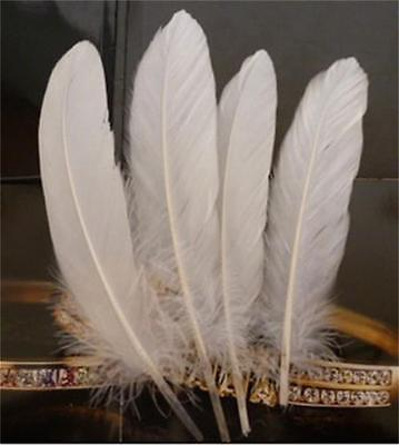 100x Natural Large Goose Pure White Feathers Jewelry Craft Wedding Party Decor