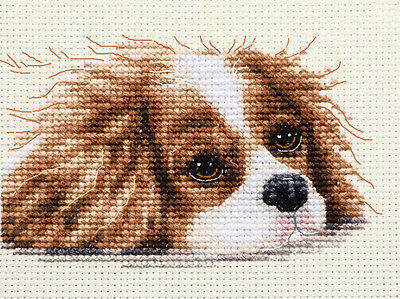 CAVALIER KING CHARLES SPANIEL - Full counted cross stitch kit + All materials